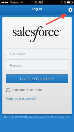SalesForce mobility options